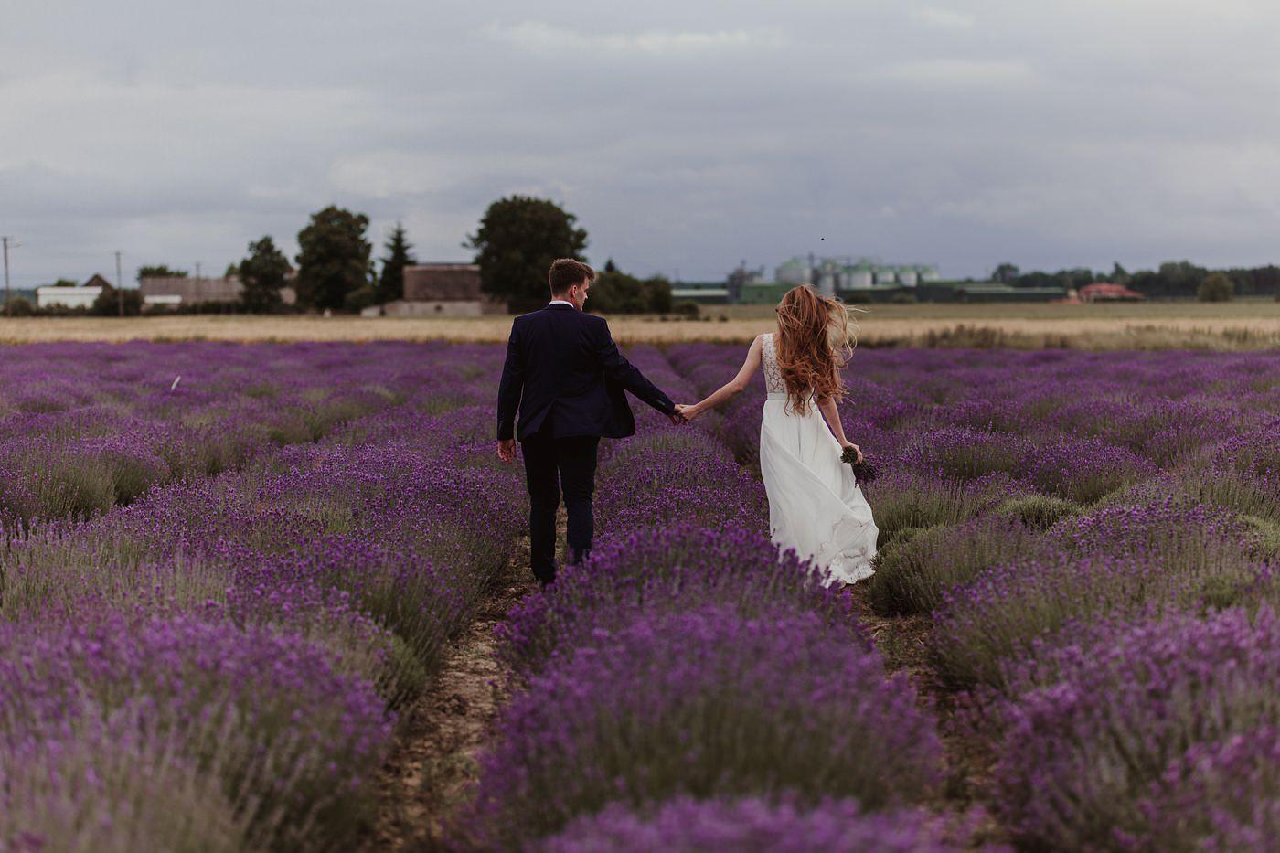 sesja ślubna na polu lawendowym